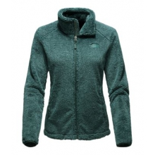 Women's Osito 2 Jacket by The North Face in Southlake Tx