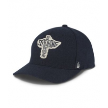 Team TNF Ball Cap by The North Face