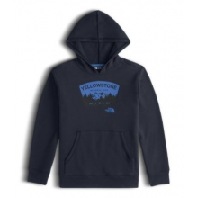 Boy's Logowear Pullover Hoodie by The North Face