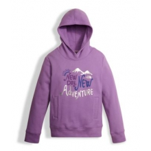 Girl's Logowear P/O Hoodie by The North Face