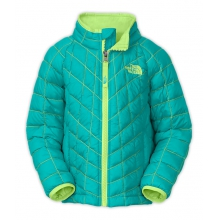 Toddler Girl's Thermoball Jacket by The North Face