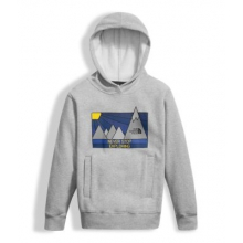 Boy's Logowear P/O Hoodie by The North Face