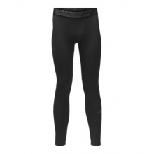 Men's Winter Training Tight
