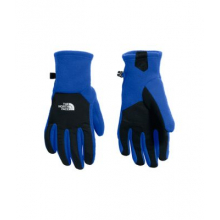 Men's Denali Etip™ Glove by The North Face