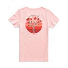Women's S/S Gradient Dreams Tri-Blend Pckt Tee by The North Face in Jonesboro AR