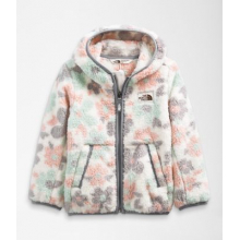 Toddler Campshire Hoodie by The North Face in Sioux Falls SD