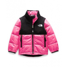 Toddler Balanced Rock Insulated Jacket by The North Face