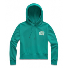 Women's Cropped Logo Haze Hoodie by The North Face in Manhattan Beach Ca
