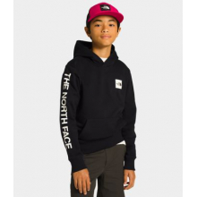 Youth Logowear Pullover Hoodie by The North Face