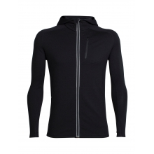 Mens Quantum LS Zip Hood by Icebreaker in New Denver Bc
