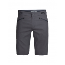 Mens Persist Shorts by Icebreaker in Fort Collins Co