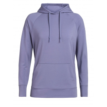 Woman's MoMentum Hooded Pullover by Icebreaker in Garfield AR
