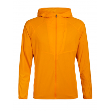 Mens Tropos Hooded Windbreaker by Icebreaker in Flagstaff Az