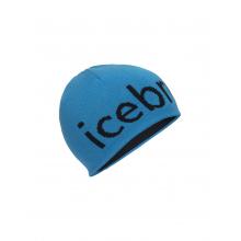 Unisex Icebreaker Beanie