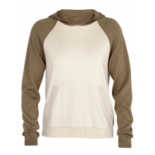 Women's Utility Explore Hooded Pullover Sweater