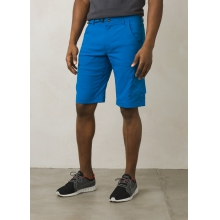 "Men's Stretch Zion Short 10"" Inseam"