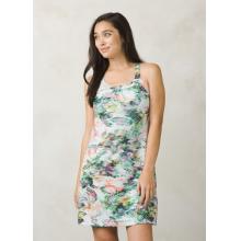 Women's Cantine Dress by Prana in Wilton Ct