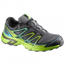 Wings Flyte 2 GTX by Salomon