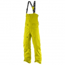 QST Charge GTX 3L Pant M by Salomon