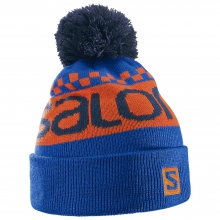 Free Beanie by Salomon in Wakefield Ri