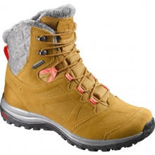 Women's Ellipse Winter GTX