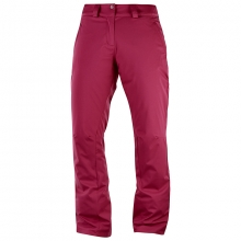 STORMPUNCH PANT W by Salomon