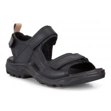 Men's Premium Offroad Sandal by ECCO in Iowa City IA