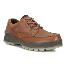 Men's Track 25 Shoe GORE-TEX by ECCO in Longmont CO