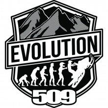 Evolution Stickers - 10PK