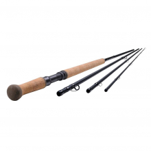 """Oracle Scandi 
