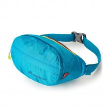 Nano Waistpack by Gregory in Loveland CO
