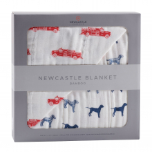Fire Truck and Dalmatian Newcastle Blanket by Newcastle Classics in Dublin Ca