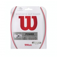 Synthetic Gut Power String by Wilson