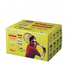 Championship Extra Duty Tennis Balls - 20 Cans (60 Balls) by Wilson