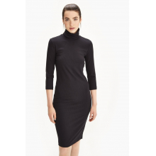 Villeray Turtle Neck Dress