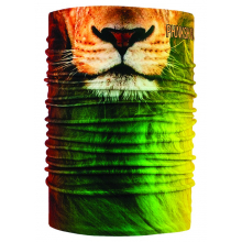 Thermal Tube Faces Rasta Lion by Phunkshun Wear