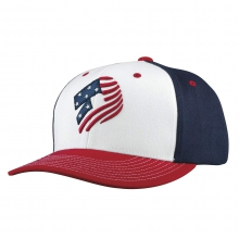 Stars and Stripes Snapback Hat by DeMarini