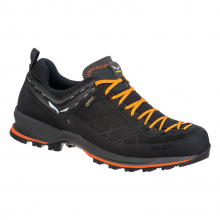 Mountain Trainer 2 GORE-TEX Men's Shoes by Salewa in Alamosa CO