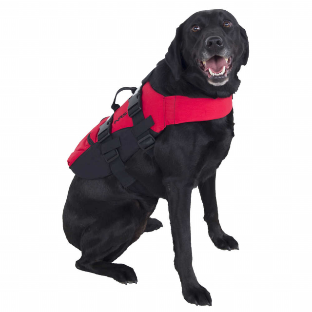 NRS - CFD Dog Life Jacket in Edwards CO