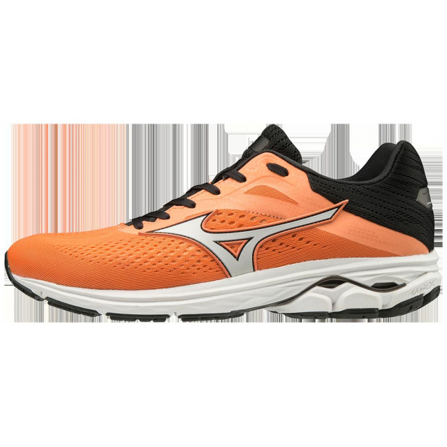 Mizuno - Wave Rider 23 Mens in Knoxville TN