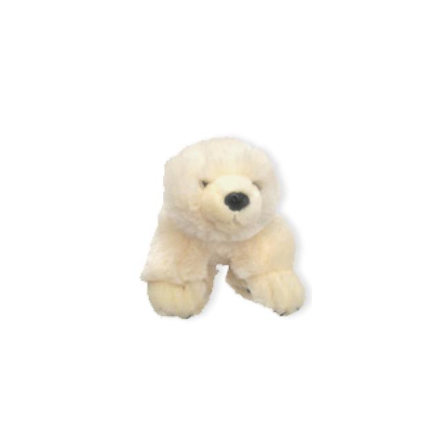 Eisbar - Baby Eisbär in Orange City FL