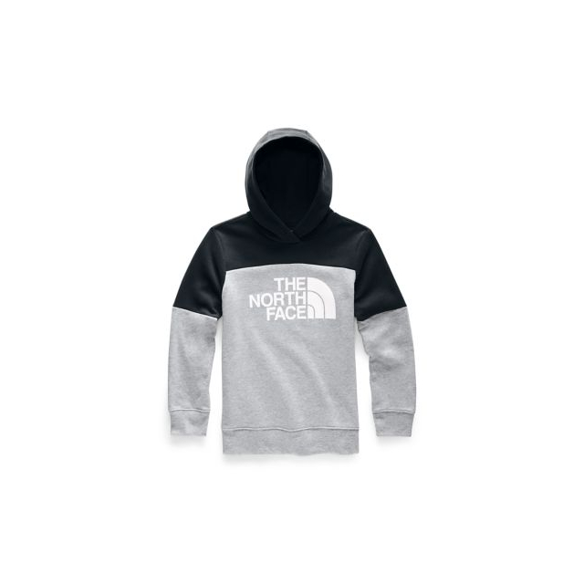 fe15532c1 The North Face / Boys' Metro Logo Pullover Hoodie