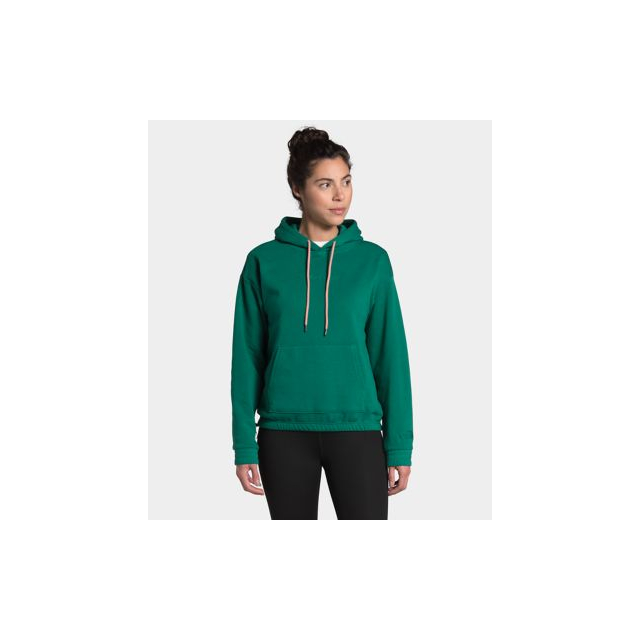 The North Face - Women's Rogue P/O Hoodie in Sioux Falls SD
