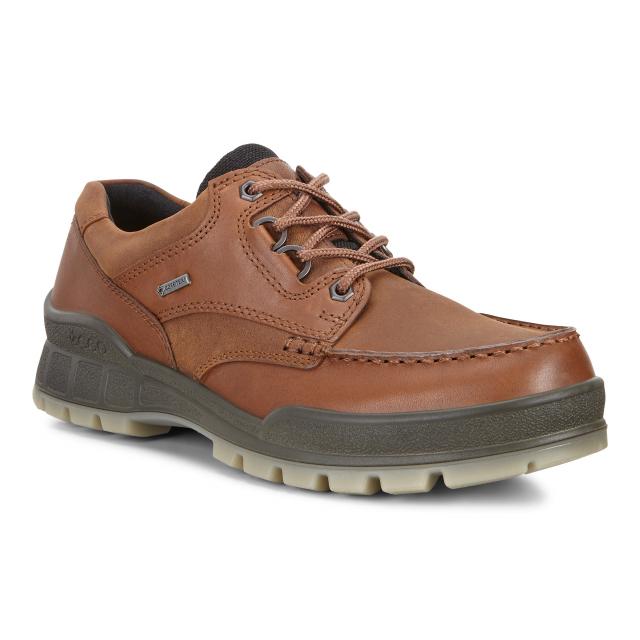 ECCO - Men's Track 25 Shoe GORE-TEX in St Joseph MO