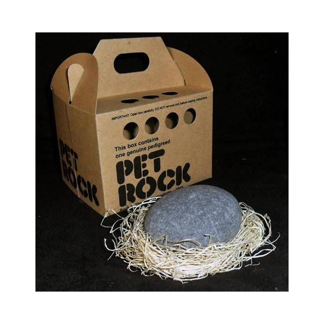 Locally Test Brand - Pet Rock