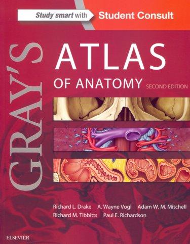 MatthewsBooks.com - 9781455748020 (1455748021) : Gray\'s Atlas of ...