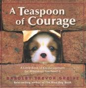 Teaspoon of Courage: A Little Book of Encouragement for Whenever You Need It