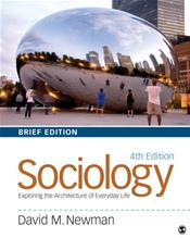 Sociology: Exploring the Architecture of Everyday Life. Brief Edition