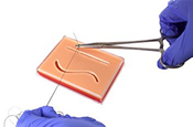 3-Layer Suture Pad with Wounds in Clear Case Image