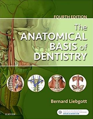Search results anatomical basis of dentistry liebgott bernard dds phd softcover elsevier science publishing company pub date 1017 2018 edition 04 fandeluxe Gallery